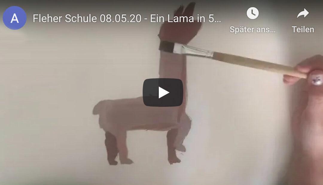 Ein Lama malen in 5 Schritten